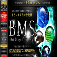 BMS(Bet Magnify System)